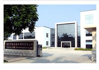 南宁市迪智药业有限责任公司办公大楼